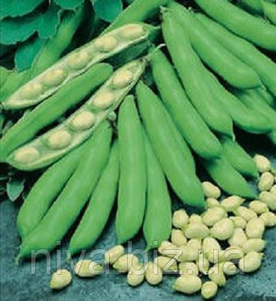 Б'янко насіння бобу овочевого Anseme 10 г