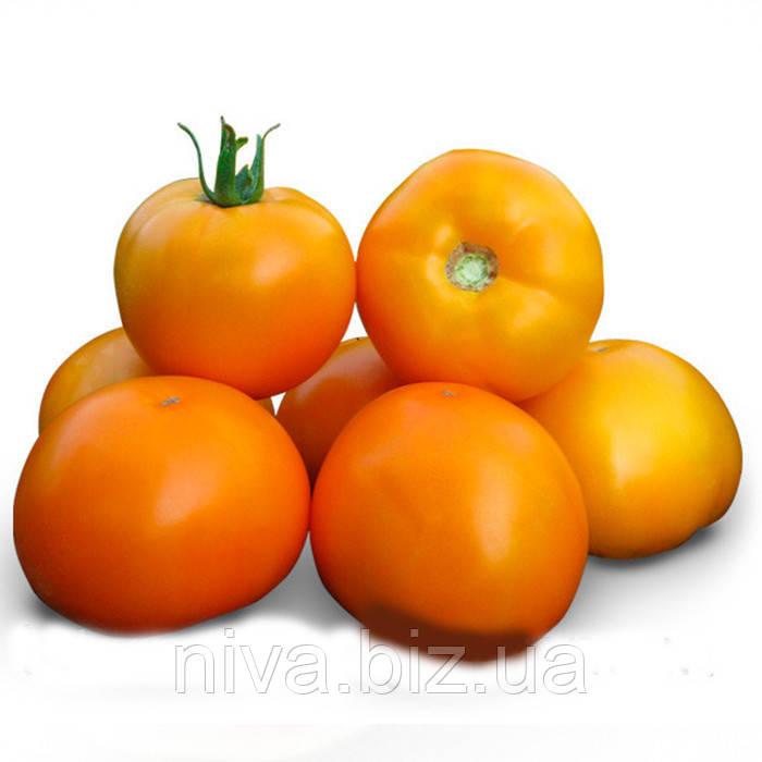 КС 17 F1 насіння томату дет. жовтого Kitano Seed 100 насінин