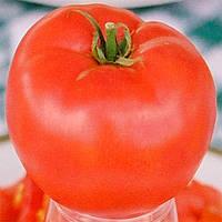 Ева F1 семена томата дет. Элитный Ряд 5 г