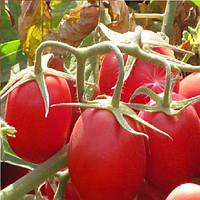 Калиендо F1 семена томата дет. ESASEM 25 000 семян