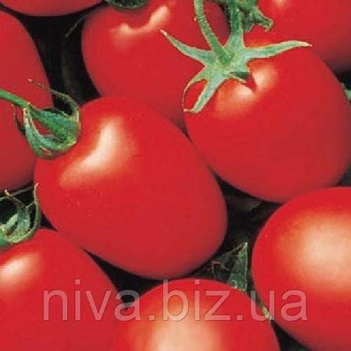 Яки F1 (Yaqui F1) семена томата Seminis 25 000 семян