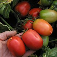 Денар семена томата Semo 10 000 семян