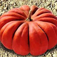 Мускат де Прованс насіння гарбуза Euroseed 500 г