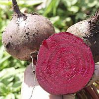Бікорес (Bikores) насіння буряка столового округлого пізньостіглого 130 днів Bejo 50 000 насінин