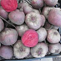 Бебібіт (Bebybeat) насіння буряка столового округлого середньораннього PR Rijk Zwaan 25 000 насінин