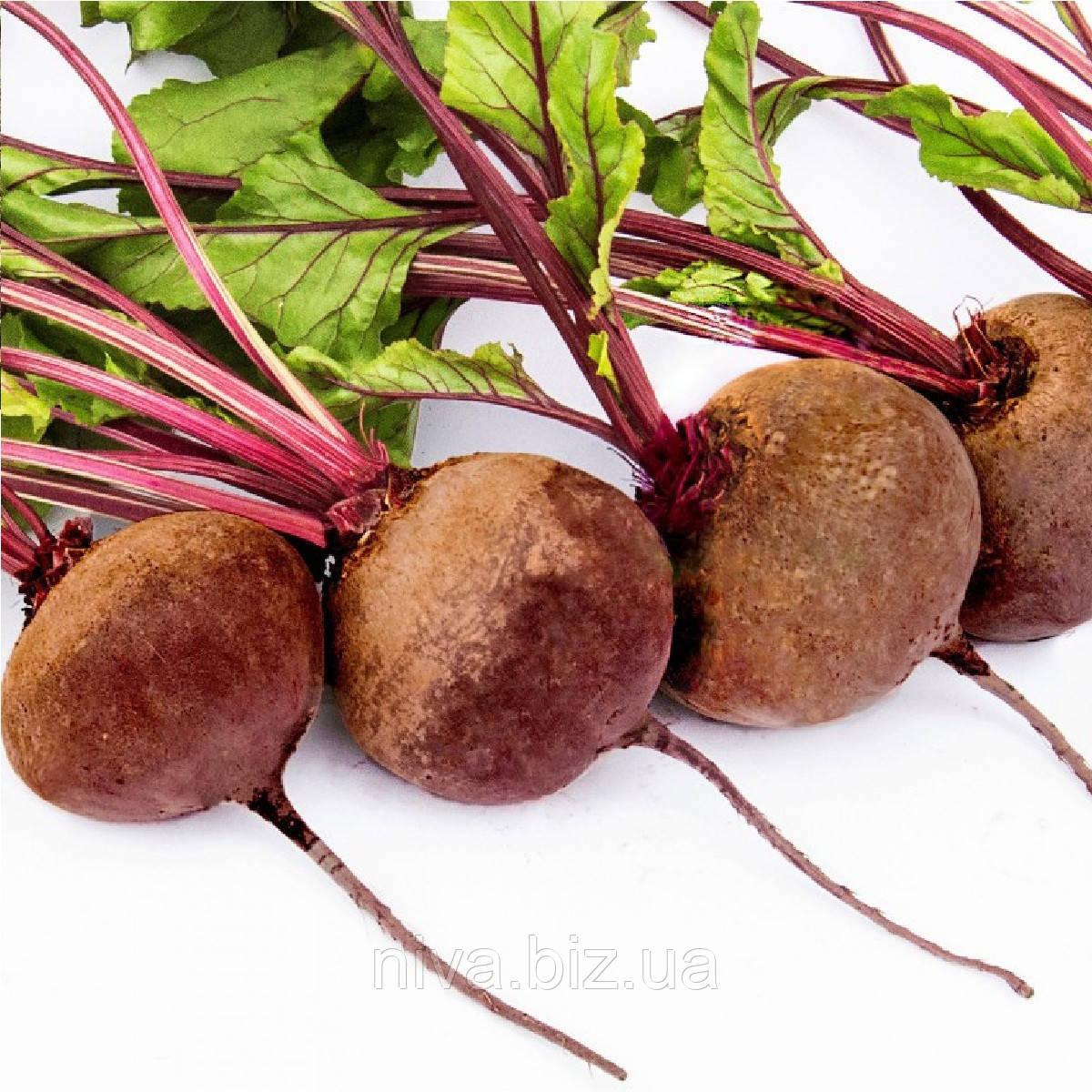 Воєвода F1 насіння буряка столового округлого середньостиглого 110-120 днів Lucky Seed 25 000 насінин