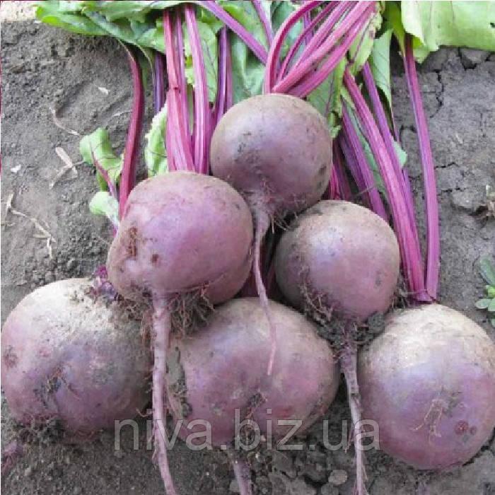 Ларка (Larka) насіння буряка столового округлого середньостиглого 100-120 днів Rijk Zwaan 500 000 насінин