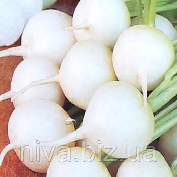Албена (Витни) семена редиса Moravoseed 25 г