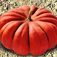 Мускат де Прованс насіння гарбуза Clause 500 г