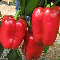 Даймос F1 семена перца сладкого Esasem 500 семян