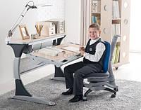 Комплект детской мебели Гарвард  KD-333  с серыми вставками + стул Оксфорд 618 сине-серый+лампа светодиодная
