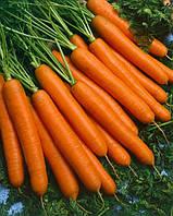 Йолана F1 семена моркови Semo 150 г