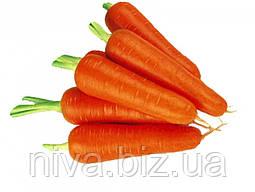 Абако F1 (Abaco F1) семена моркови  1.8 - 2.0 мм Seminis 1 000 000 семян