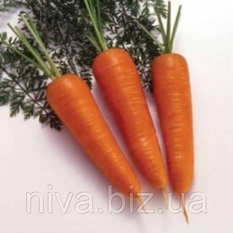 Нью Курода семена моркови Курода Euroseed 5 000 г