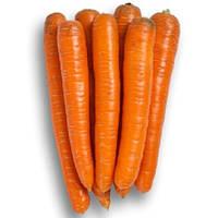 Трафорд F1 (Trafford F1) семена моркови Флаке от 1,6 мм Rijk Zwaan 100 000 семян