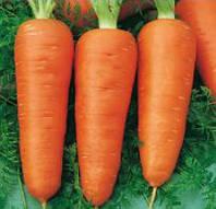 Кампино семена моркови Satimex 500 г