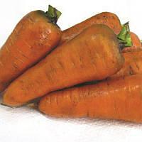 Арго семена моркови Шантане Lucky Seed 100 г