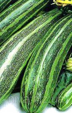 Тапір насіння кабачка Moravoseed 100 г