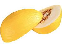 Агасі F1 насіння дині Kitano Seed 1 000 насінин