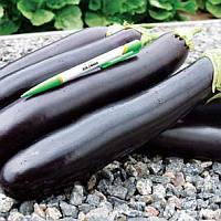 Естелле F1 насіння баклажану Rijk Zwaan 1 000 насінин