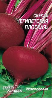 Єгипетська плоска насіння буряка плосьа середньостигла 80-100 днів Насіння України 3 г