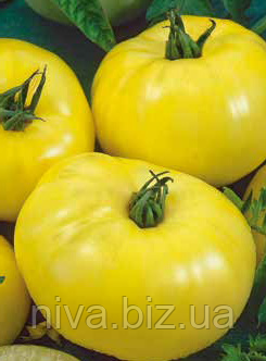 Лимонный гигант семена томата Семена Украины 0.20 г
