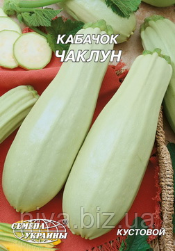 Чаклун насіння кабачка Насіння України 20 г