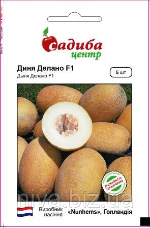Делано F1 насіння дині Садиба Nunhems 5 насінин