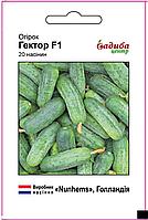 Гектор F1 насіння огірка Садиба Nunhems 20 семян