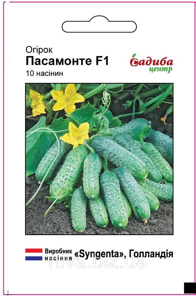 Пасамонте F1 насіння огірка Садиба Центр Syngenta 10 семян