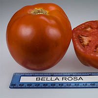 Белла Росса F1 семена томата дет. Sakata 500 семян