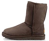 Мужские зимние сапоги UGG Australia Classic Short (угги австралия) коричневые