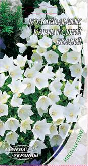 Колокольчик карпатский белый Семена Украины 0,20 г