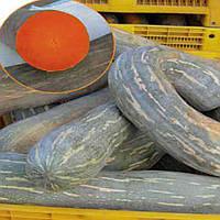 Лунга Пієна ді Наполі насіння гарбуза Euroseed 100 г