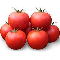 Хайд (КС 835) F1 насіння томату дет. Kitano Seeds 500 насінин