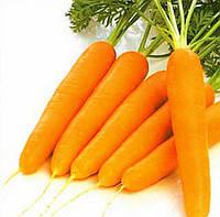 Болеро F1 семена моркови Нантская Vilmorin 100 000 семян