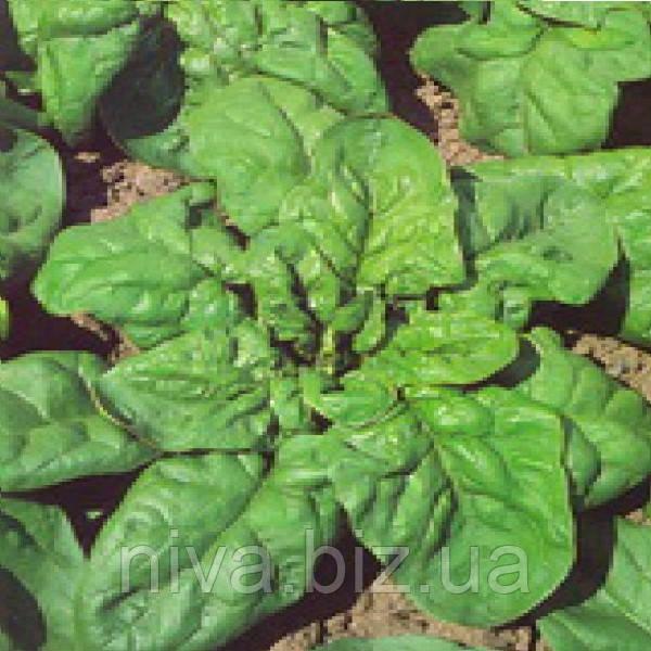 Монорес семена шпината Semo 4 000 г