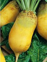 Эккендорфская желтая свекла кормовая Семена Украины 0,5 кг