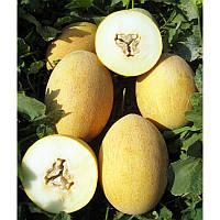 Анамакс F1 насіння дині United Genetics 1 000 насінин