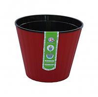 Ібіс з чорним вкладом 13,0*11,2 см червоний бархат Алеана