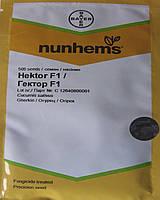 Гектор F1 семена огурца открытого грунта Nunhems 500 семян
