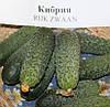 Кибрия F1 (Kybria F1) семена огурца-корнишона партенокарп. Rijk Zwaan 250 семян