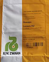 Ленара F1 (Lenara F1) семена огурца-корнишона партенокарп. Rijk Zwaan 1 000 семян