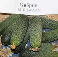Кибрия F1 Kybria F1 семена огурца-корнишона партенокарп. Rijk Zwaan 1 000 сем