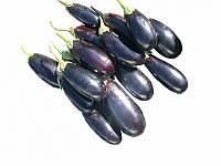 Антрацит F1 насіння баклажану Lucky Seed 250 насінин
