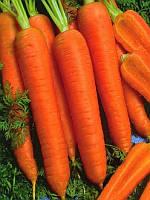 Канада F1 (Kanada F1) 2.0-2.2 мм семена моркови Bejo 1 000 000 семян