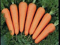 Каскад F1 (Cascade F1) 2.2-2.4 мм семена моркови Bejo 1 000 000 семян