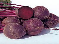 Водан F1 (Wodan F1) насіння буряка столового округлого ранньостиглого 85-90 днів Bejo 50 000 насінин