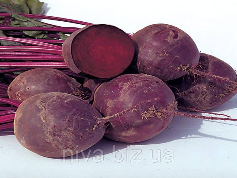 Водан F1 (Wodan F1) насіння буряка столового округлого ранньостиглого 85-90 днів Bejo 5 000 насінин