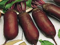 Циліндра насіння буряка циліндричного середньостиглого 115-120 днів Semenaoptom 100 г